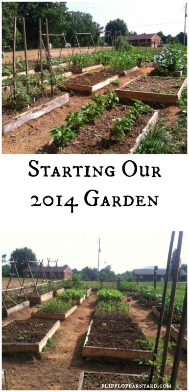 Starting our soft raised bed garden in 2014