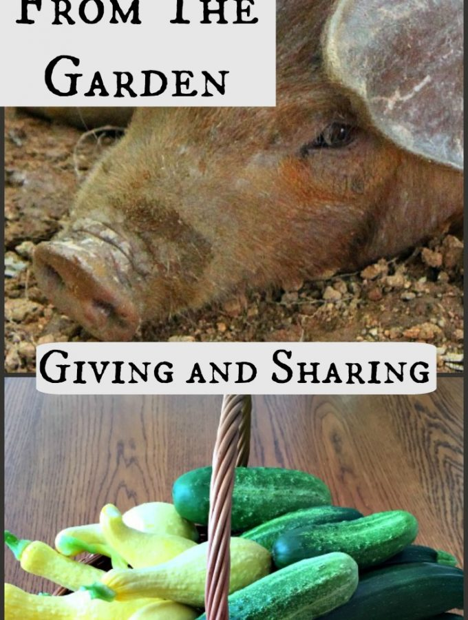 Life Lessons From The Garden- Giving and Sharing