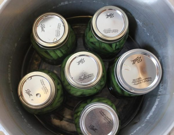 Canning your own food is a great way to save money on the homestead.