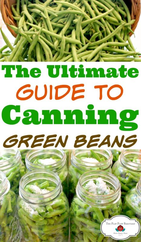 How to pressure can green beans. Pressure canning green beans is a great way to preserve food for our family. I love to fill my pantry shelves with home canned foods. Green beans are one of the staples in our home canning pantry.