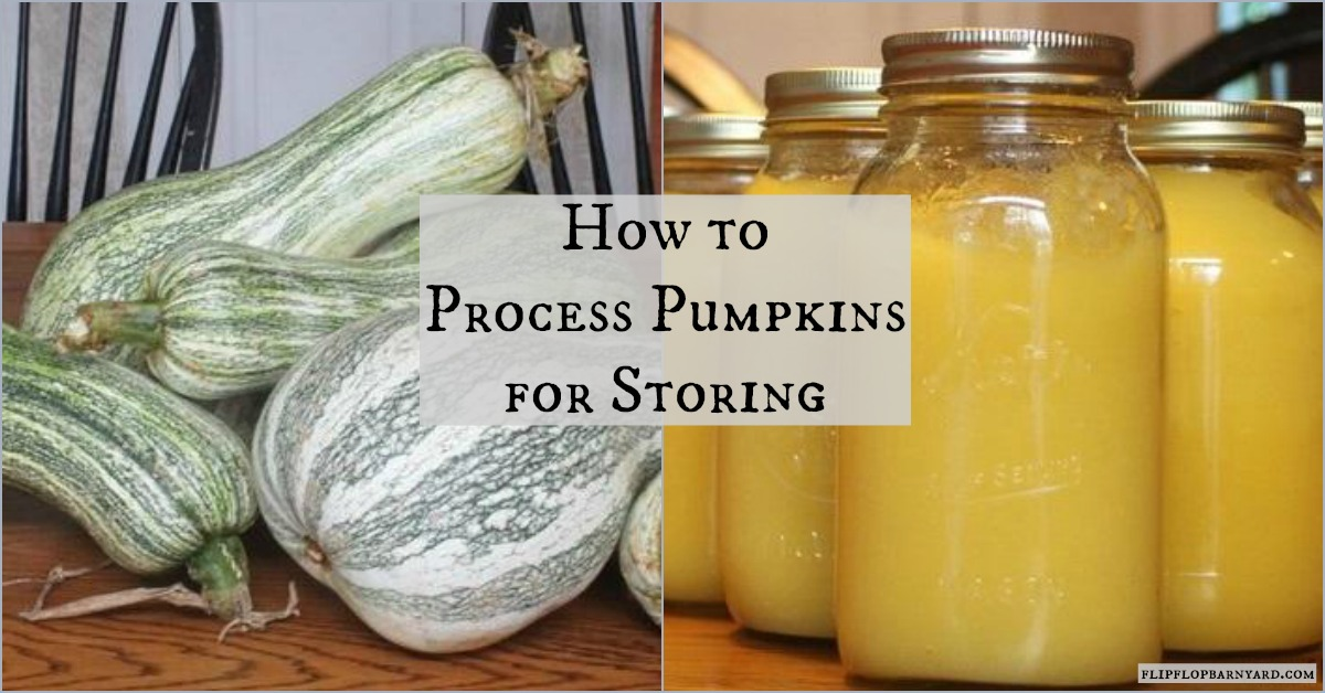 How to Make and Freeze Pumpkin Puree in Mason Jars