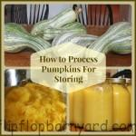 How to process pumpkins for storing