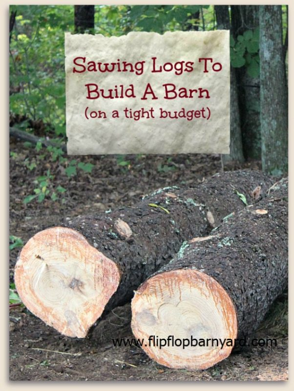 Sawing Logs To Build A Barn (on a tight budget)