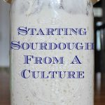 How to start sourdough from a culture