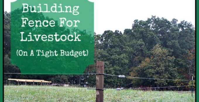 Building fence for livestock (on a tight budget).