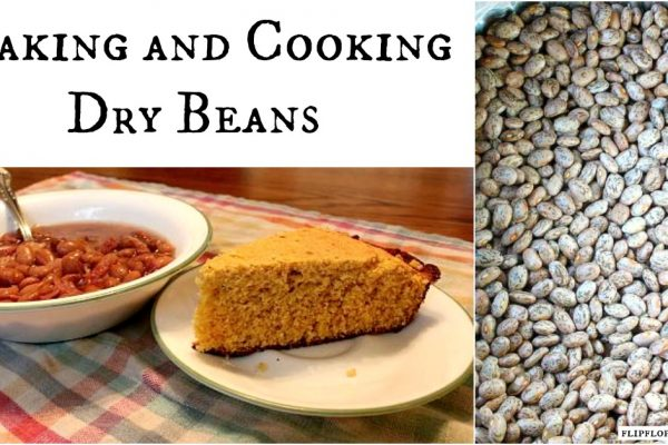 Soaking and Cooking Dry Pinto Beans