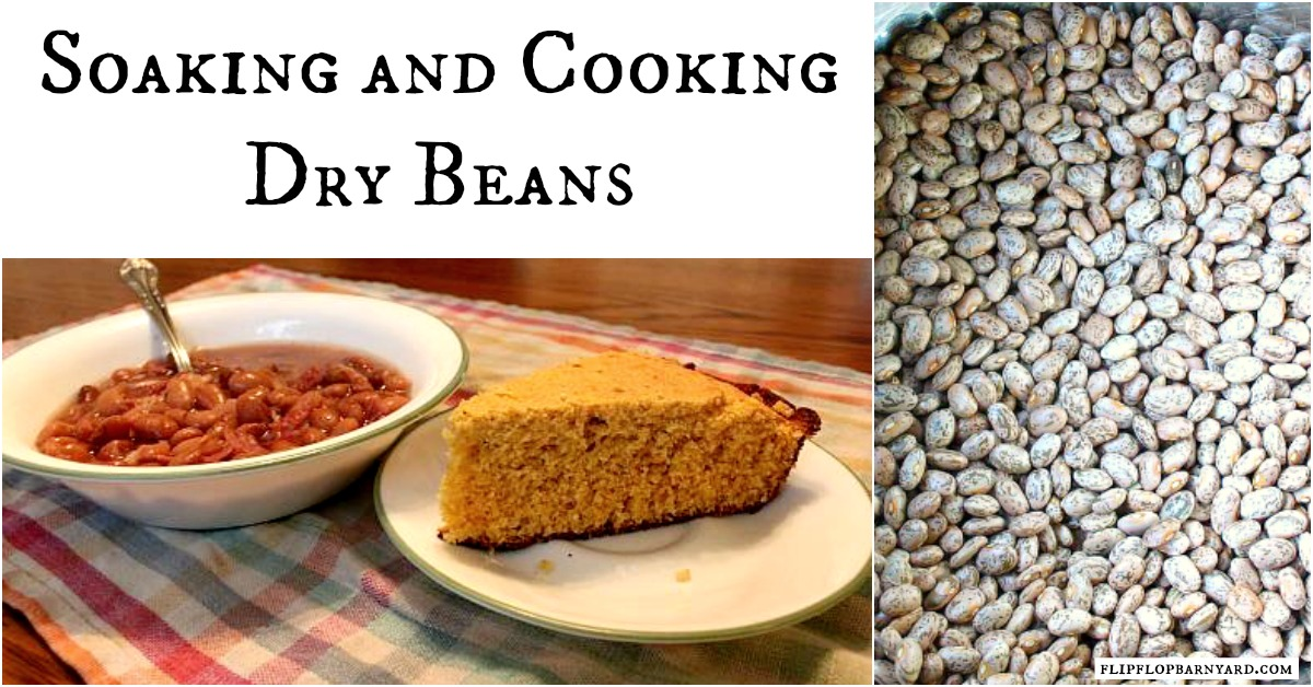 Soaking and Cooking Dry Beans
