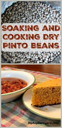 How to Soak Dry Beans.