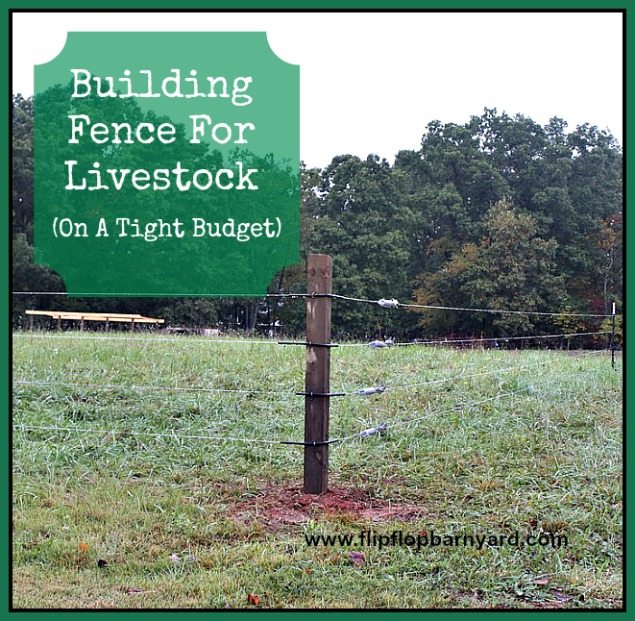 Building fence for livestock (on a tight budget) | www.flipflopbarnyard.com