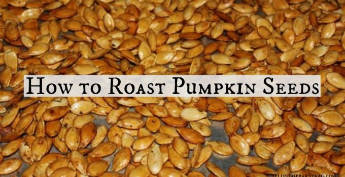 How to roast pumpkin seeds.