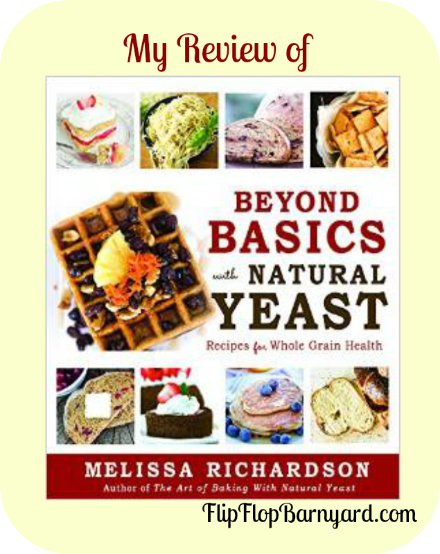Beyond Basics with Natural Yeast Book Review