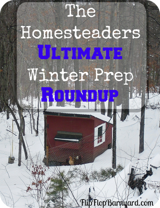 What do you need to homestead in the winter? How can you prepare your homestead, livestock, garden, animals, home, and everything for winter?