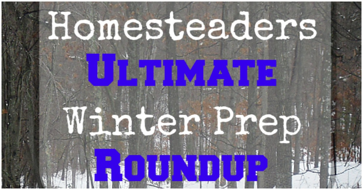 The Homesteaders Ultimate Winter Prep Roundup – 32 Expert Tips