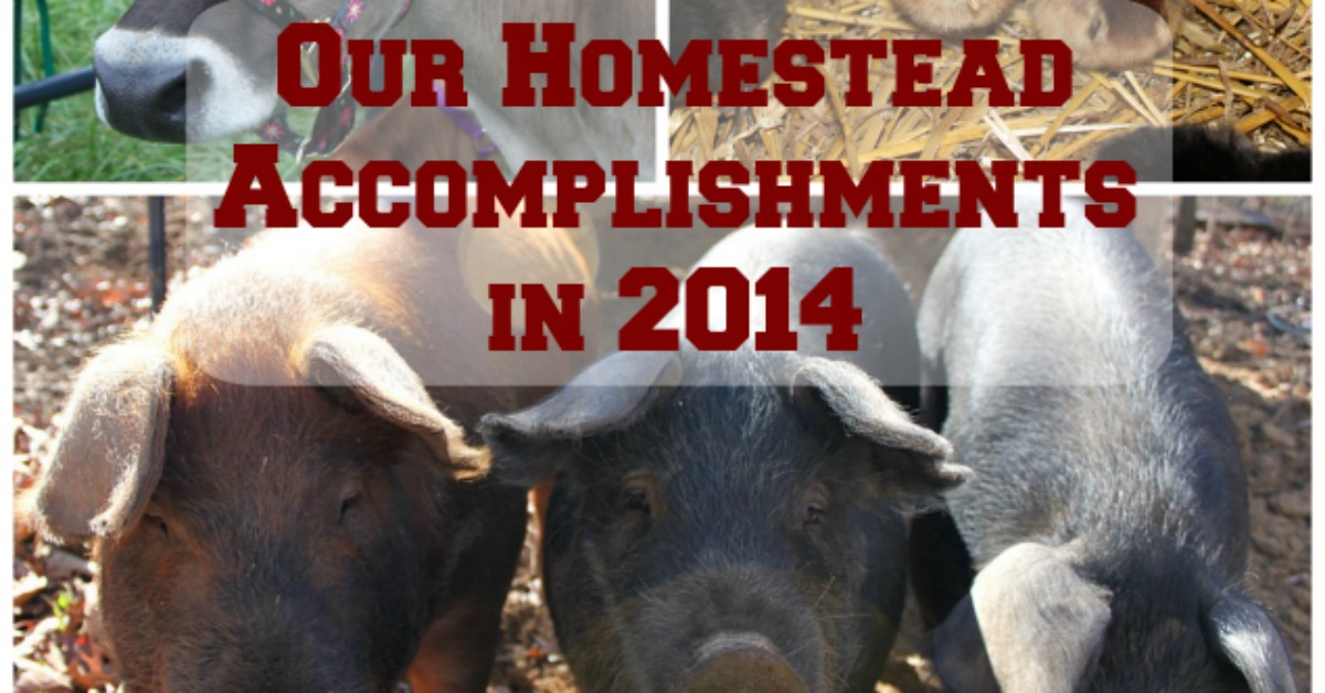 Our homestead accomplishments in 2014.