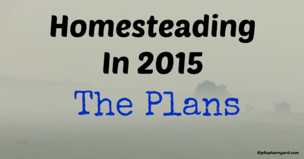 Our 2015 homestead plans