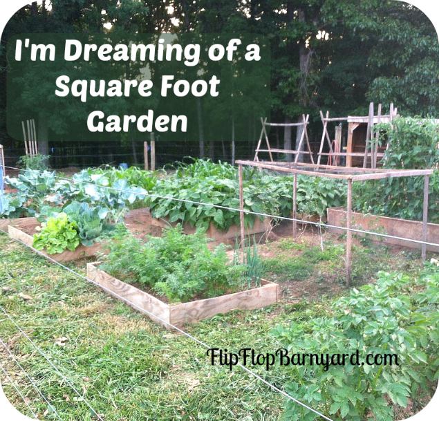 I'm Dreaming of a Square Foot Garden | The Flip Flop Barnyard