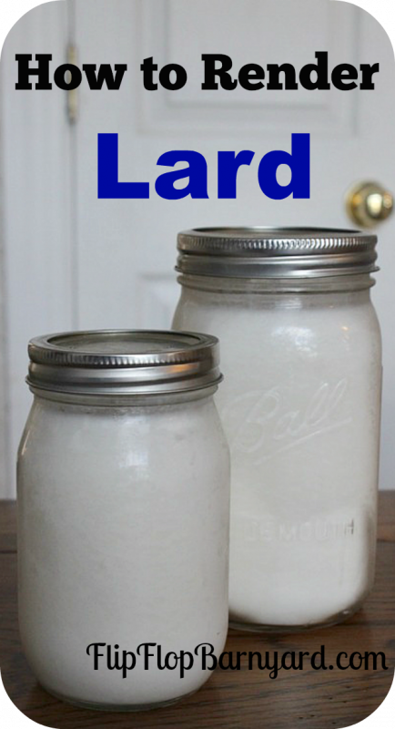 How to render lard in a crock pot. Lard is great to have on hand for cooking, baking, pastries, and even soap making. rendering lard is easy and a great skill.