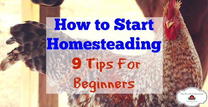 How to Start Homesteading- 9 Tips For Beginners