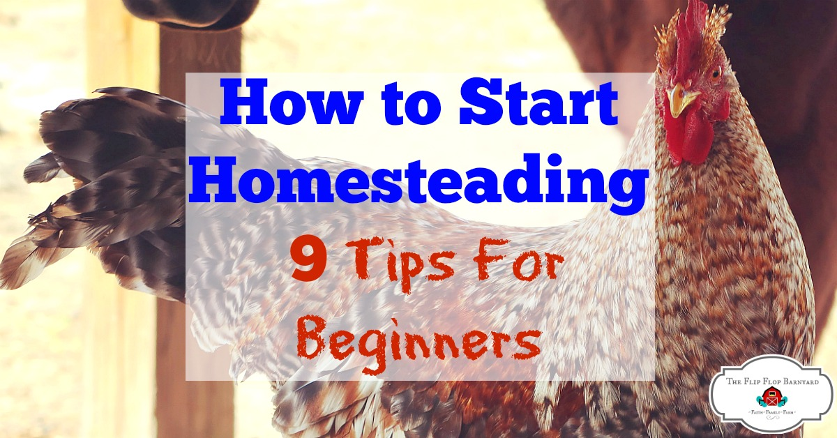 How to Start Homesteading Right Now