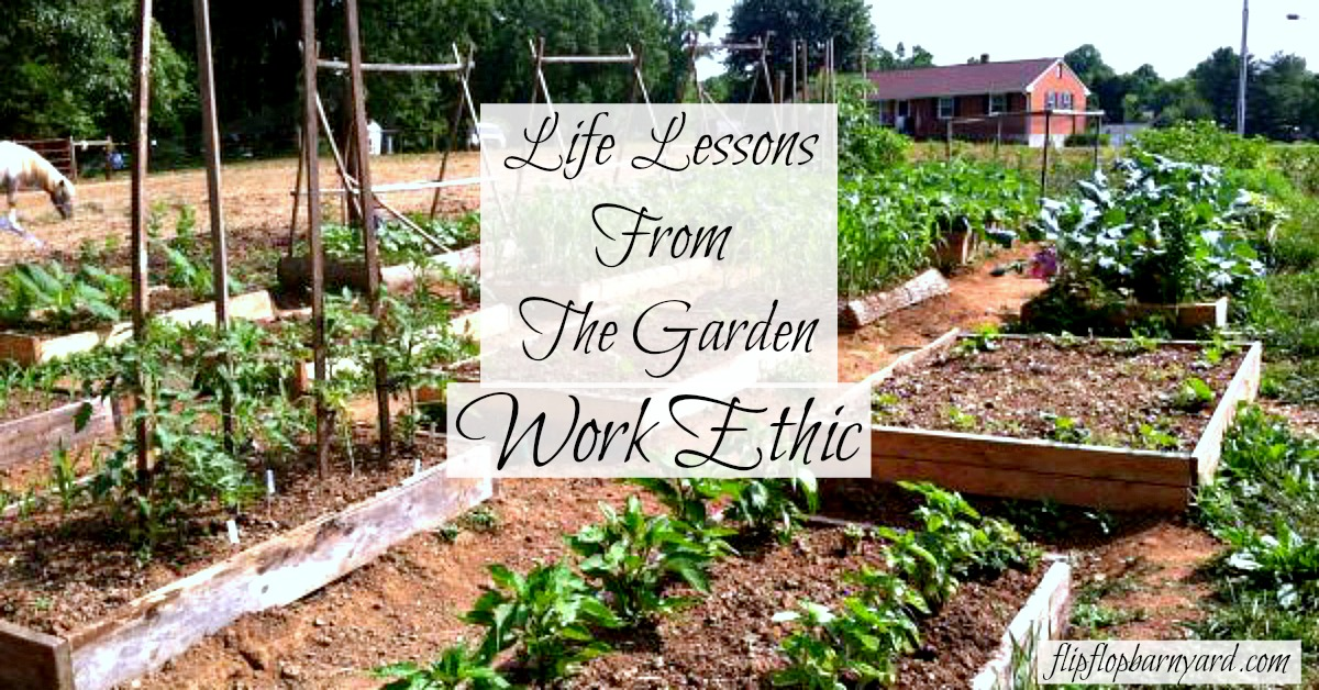 Life Lessons From The Garden- Work Ethic
