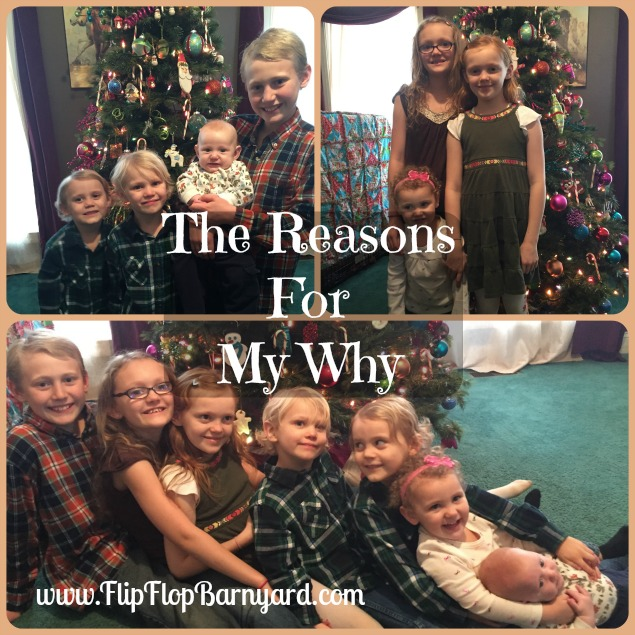 The Reasons For My Why