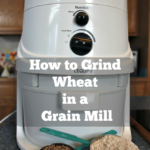 How to grind wheat in a grain mill. You can grind your own grains at home in a grain mill.