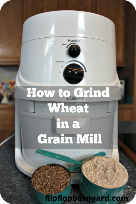 I love to grind my own wheat in a grain mill. There's nothing like having fresh ground wheat to bake with. My grain mill is one of the best kitchen tools I have ever gotten.