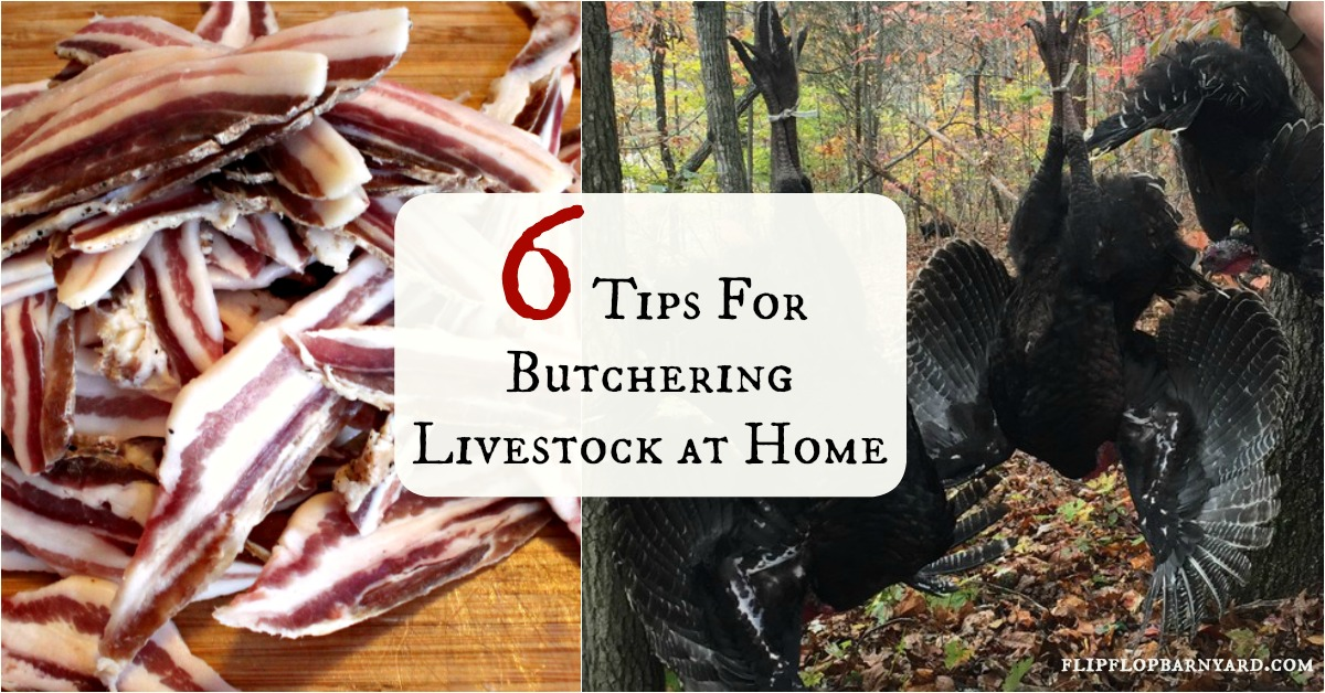 6 Tips for Butchering at Home