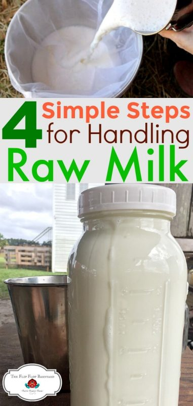 "A photo collage of raw milk being poured into a bucked and a jar full of raw milk with the words ""4 simple steps for handling raw milk"""