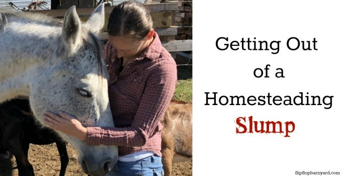 Getting yourself out of a homesteading slum. How to ditch those homesteading blues.