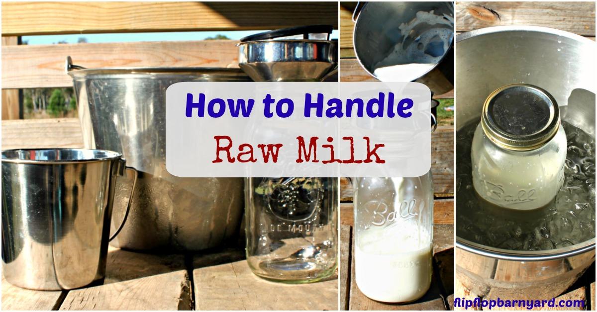 How to Handle Raw Milk