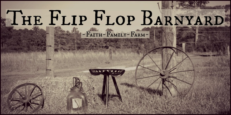 The Flip Flop Barnyard Blog