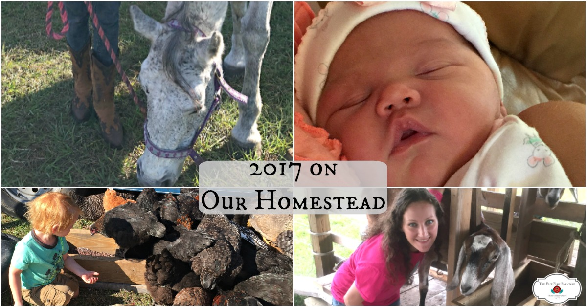 2017 On Our Homestead