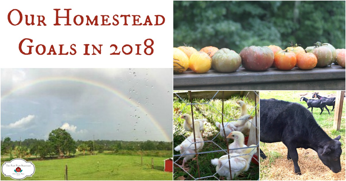The Flip Flop Barnyard 2018 Homestead Goals