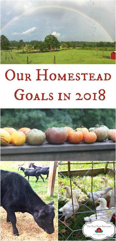 The Flip Flop Barnyard 2018 Homestead Goals