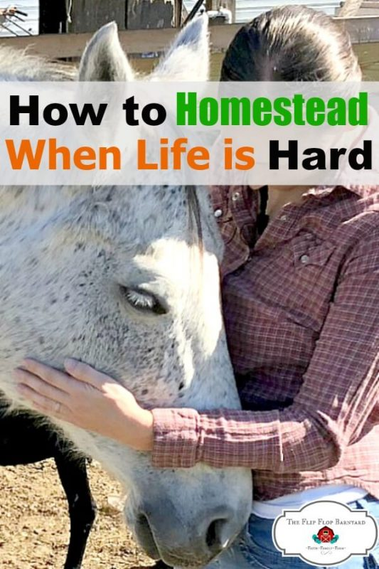 Sometimes life is hard and homesteading through it is tough. Getting yourself out of a homesteading slump isn't easy but can be done. How to ditch those homesteading blues.