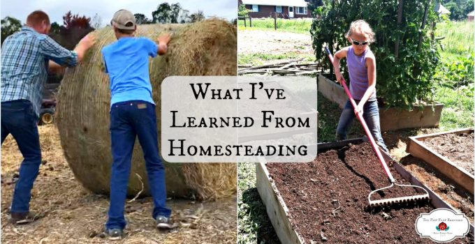 8 Incredible Lessons Learned from Homesteading
