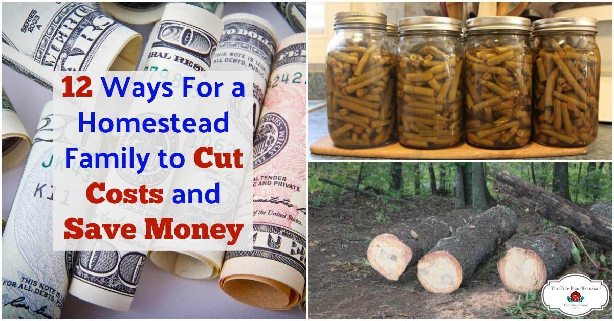 Here are 12 tips for a homestead family to cut costs ad save money. I'm always looking for areas that I can be frugal in.