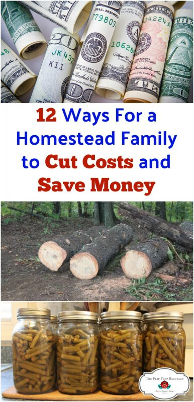 Here are 12 tips for a homestead family to cut costs ad save money. I'm always looking for areas that I can be frugal in. Frugal tips that any family can utilize.