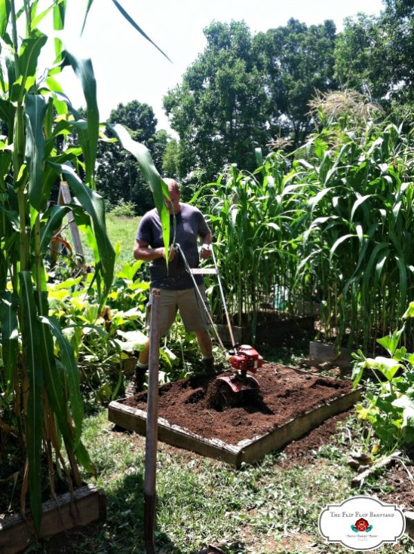 Lessons Learned from Homesteading- Over the years, I've learned so many valuable lessons from homesteading. These 8 lessons learned on the homestead will help you on your homesteading journey.