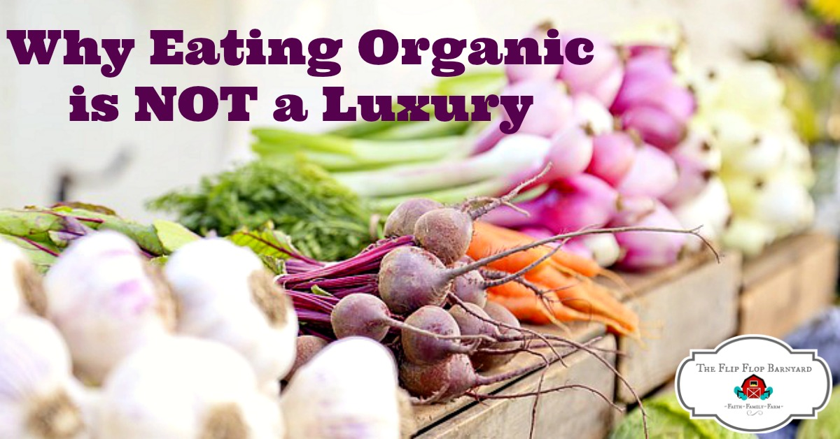 Eating Organic is Not a Luxury