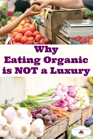 Eating organic is not a luxury. A case for eating clean, real, whole food. Organic food is vital for your health.
