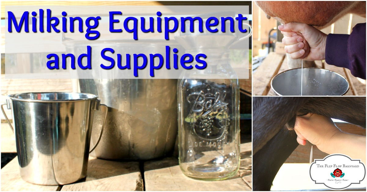 Top 6 Milking Equipment and Suppliesfor Milking at Home