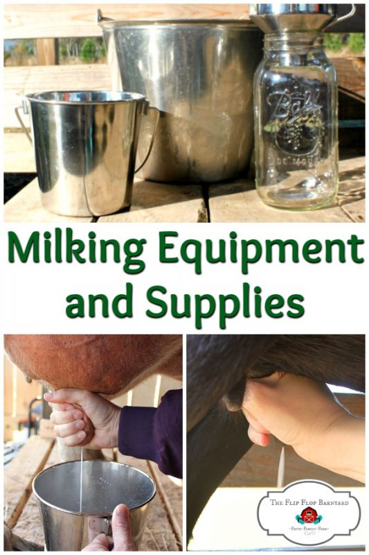 Milking equipment for the homestead dairy is essential. You'll need all the right milking supplies to milk your goat or cow.