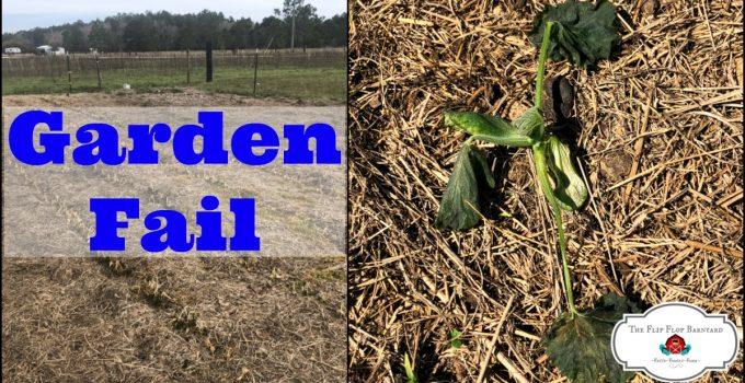 Garden Fail on the Homestead