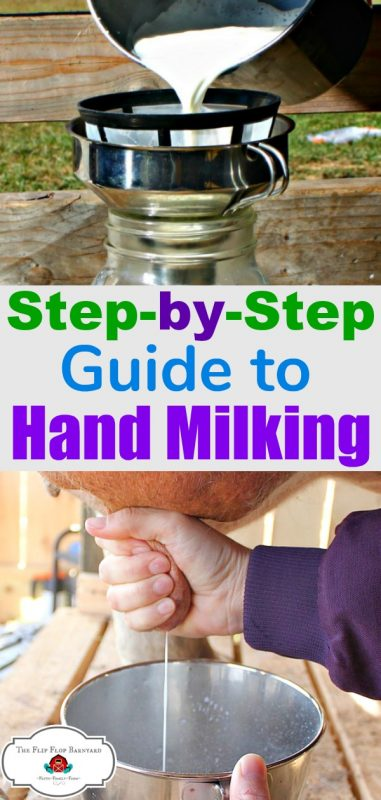 "a photo collage of milk being poured into a jar and a cow's udder being milked with the words ""step by step guide to hand milking"""