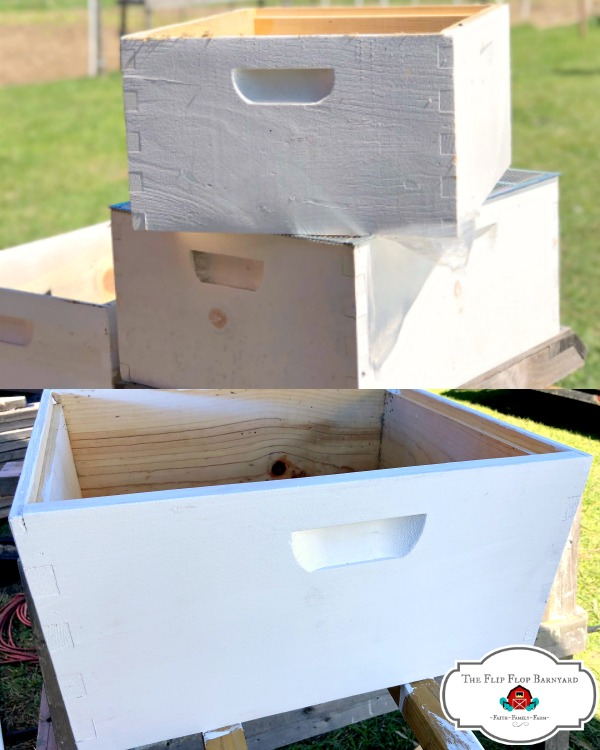 Preparing for bees on the homestead down't take much. All you need to know to get ready for bees. Are you thinking about adding bees to your homestead?