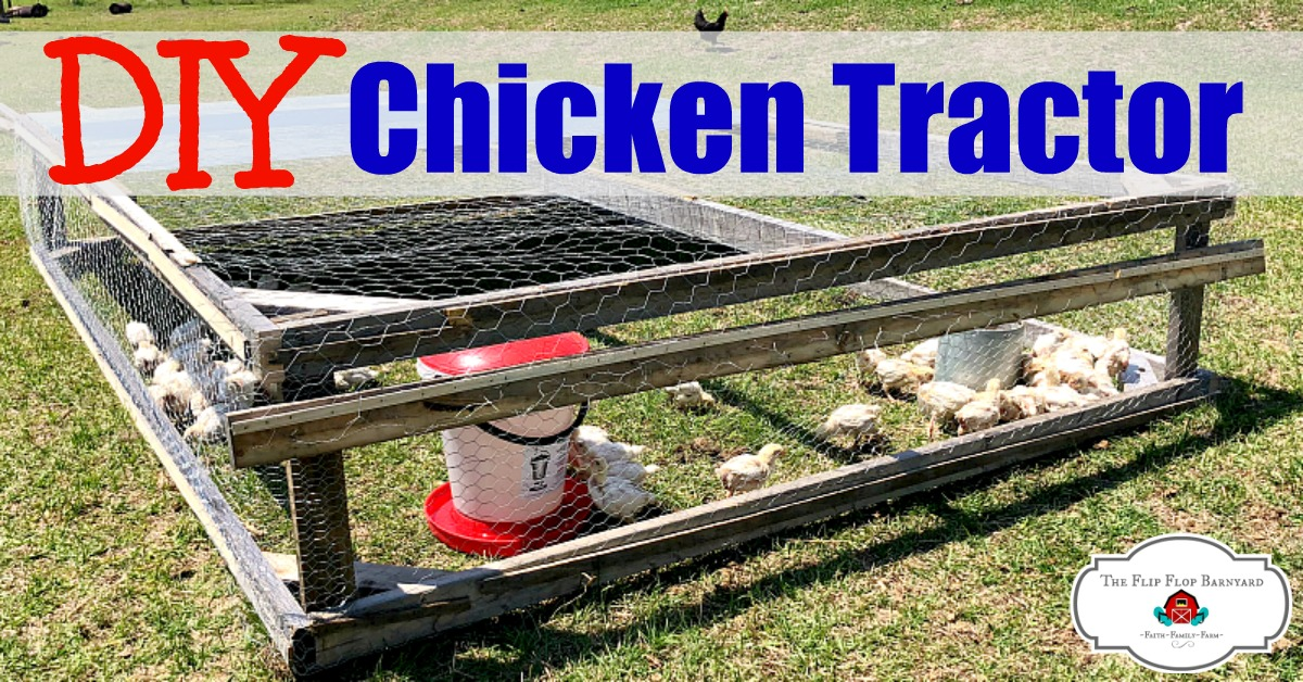 DIY Chicken Tractor for Pastured Broilers- Salatin Style