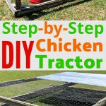 """A photo collage of a chicken tractor and the words """"step by step DIY chicken tractor"""""""