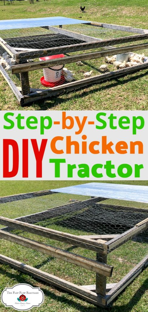 "A photo collage of a chicken tractor and the words ""step by step DIY chicken tractor"""